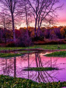 Sunday's purple dusk (1 of 1)